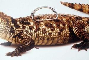 sumka_iz_krokodila